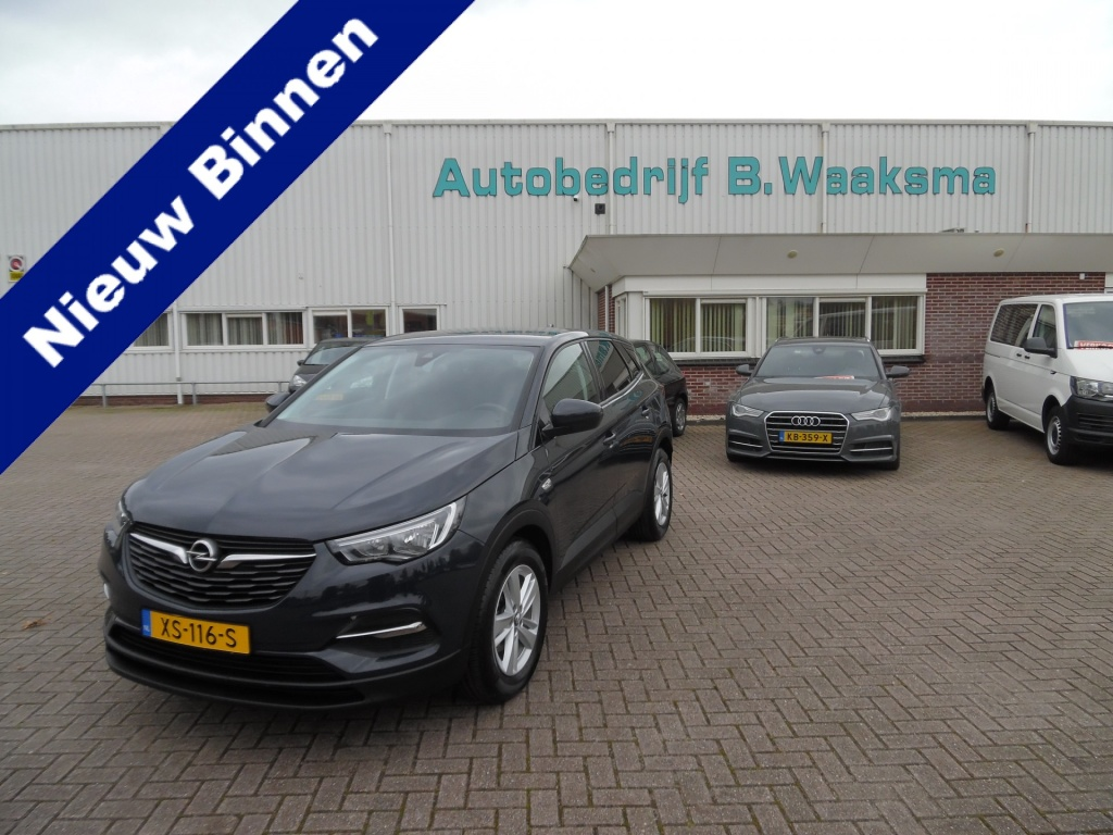 Opel-Grandland X-thumb
